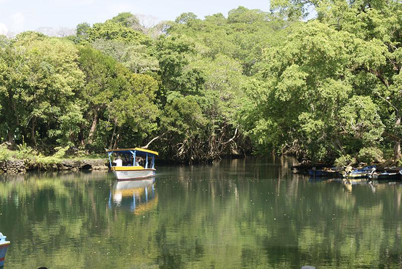 Un viaje por la costa de María Trinidad Sánchez